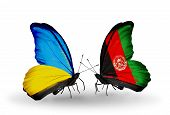 Two Butterflies With Flags On Wings As Symbol Of Relations Ukraine And Afghanistan