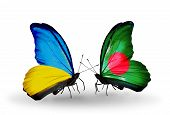 Two Butterflies With Flags On Wings As Symbol Of Relations Ukraine And Bangladesh