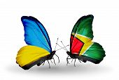 Two Butterflies With Flags On Wings As Symbol Of Relations Ukraine And Guyana