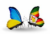 Two Butterflies With Flags On Wings As Symbol Of Relations Ukraine And Zimbabwe
