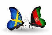 Two Butterflies With Flags On Wings As Symbol Of Relations Sweden And Afghanistan
