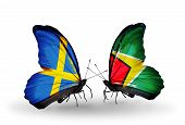 Two Butterflies With Flags On Wings As Symbol Of Relations Sweden And  Guyana