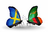 Two Butterflies With Flags On Wings As Symbol Of Relations Sweden And Zambia