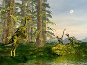 Caudipteryx and dilong dinosaurs - 3D render
