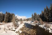 picture of blanket snow  - A snow blanket over Vallecito Creek in Vallecito - JPG