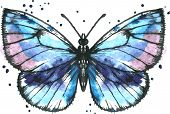 foto of blue butterfly  - Blue butterfly drawing by ink and watercolor with paint stains - JPG