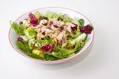 foto of escarole  - Chicken salad with tomatoes and raisin in a white bowl - JPG