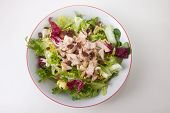 image of escarole  - Chicken salad with tomatoes and raisin in a white bowl - JPG