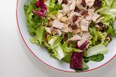 stock photo of escarole  - Chicken salad with tomatoes and raisin in a white bowl - JPG
