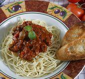 pasta dish with elk meat sauce