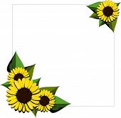 Sunflower cartoon background