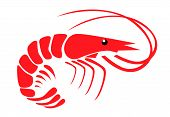 pic of tiger prawn  - Shrimp vector illustration design on white background - JPG