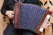 image of accordion  - Accordionist plays Russian accordion widely stretching fur - JPG