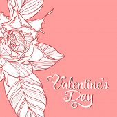 Valentine's Day lettering Greeting Card on pink background, vector illustration with roses