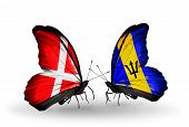 Two Butterflies With Flags On Wings As Symbol Of Relations Denmark And Barbados