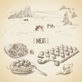 stock photo of cow  - Vector set of vintage sketches - JPG