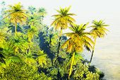 image of rainforest  - Beautiful rainforest with palm trees - JPG