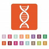 foto of dna  - The dna icon - JPG