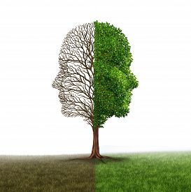 picture of half  - Human emotion and mood disorder as a tree shaped as two human faces with one half empty branches and the opposite side full of leaves as a medical metaphor for psychological contrast in feelings on a white background - JPG