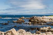 Постер, плакат: Between Bird Rock And Point Joe At 17 Mile Drive