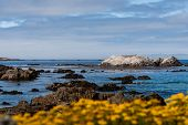 Постер, плакат: Bird Rock At 17 Mile Drive