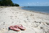 image of bribie  - a pair of pink jandles thongs or flip flops on a beach in queensland australia - JPG