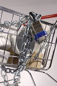 Close Up Secure Shopping Cart