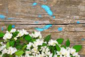 Wooden Surface With Apple Blossom
