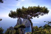 Capri And Faraglioni, Campania, Italy