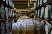 Barriles de whisky en una destilería