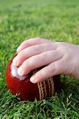 stock photo of cricket ball  - A young child - JPG
