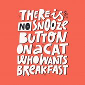 Hungry Pet Cute Quote Isolated On Red Background. There Is No Snooze Button On A Cat Who Wants Break poster