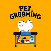 Pet Grooming Concept. White Lap-dog On Grooming Table At Salon. Dog Care, Grooming, Hygiene, Health. poster
