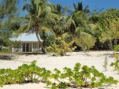 Grand Cayman Small Beach House