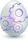 Gears on egg