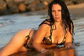 Bikini Beauty Laying In The Sand At The Beach