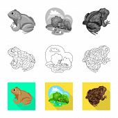 Vector Design Of Wildlife And Bog Sign. Collection Of Wildlife And Reptile Vector Icon For Stock. poster