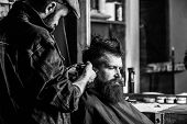 Barber With Clipper Trimming Hair On Temple Of Client. Hipster Client Getting Haircut. Barber With H poster