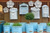 Flea Market Window Shop With Gardening Decoration - Vintage Metal Flowerpots With Herbs And Rusty Po poster