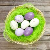 easter nest with easter eggs