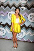 PASADENA, CA - 8 de JAN: Lea Michele atende a FOX TV 2013 TCA inverno Press Tour no Langham Huntingt