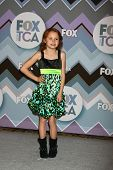 PASADENA, CA  - JAN 8:  Maggie Elizabeth Jones attends the FOX TV 2013 TCA Winter Press Tour at Lang