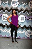 PASADENA, CA - JAN 8:  Annie Parisse attends the FOX TV 2013 TCA Winter Press Tour at Langham Huntin