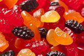Bio-Obst Gummibärchen Snacks für Kinder