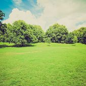 pic of kensington  - Vintage looking The Kensington Gardens and Hide Park London UK - JPG