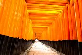 Fushimi Inari Taisha, Kyoto/Japan