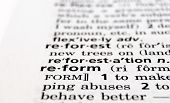 Reform Defined