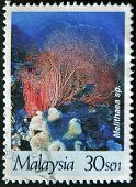 Malaysia - Circa 1997: A Stamp Printed In Malaysia Shows Melithaea Sp., Circa 1997