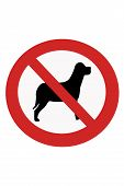 Signs Banning Dogs