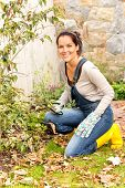 stock photo of kneeling  - Smiling woman gardening yard fall hobby housework kneeling dry leaves - JPG